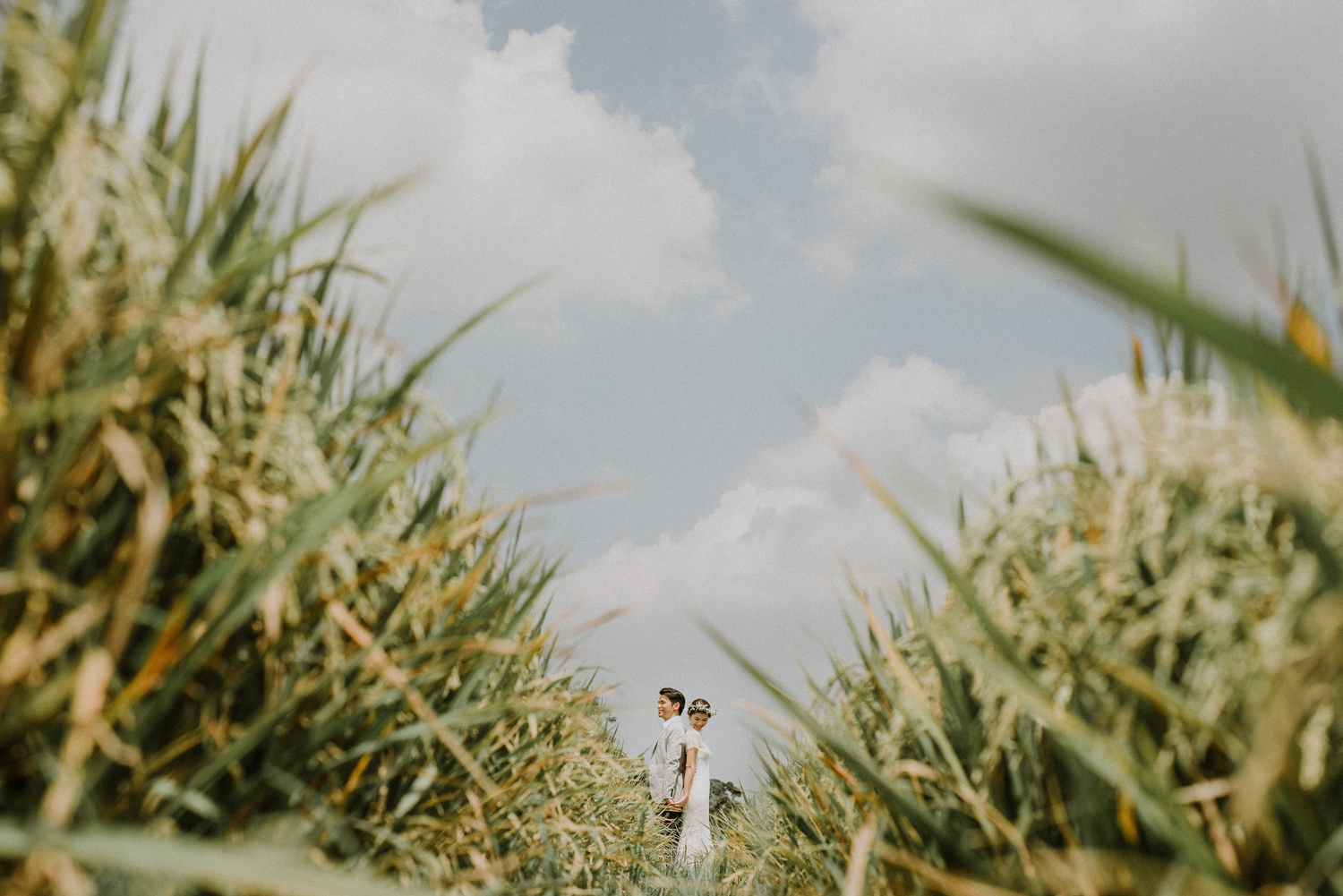 preweddinginbali-bali-batur-ubud-diktatphotography-engagemnet-baliweddingphotographer-weddinginbali-30