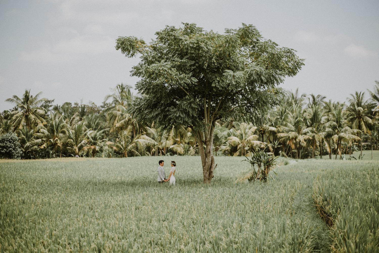preweddinginbali-bali-batur-ubud-diktatphotography-engagemnet-baliweddingphotographer-weddinginbali-26